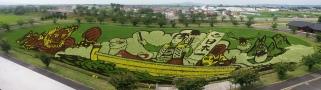 Rice paddy art outside Aomori!